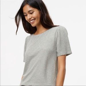 Loft Olive Striped Short Sleeve Tee - Small